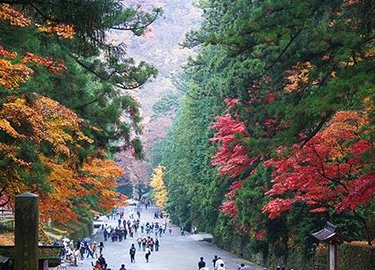 県のイメージ写真